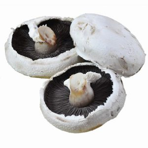 Flat Mushrooms